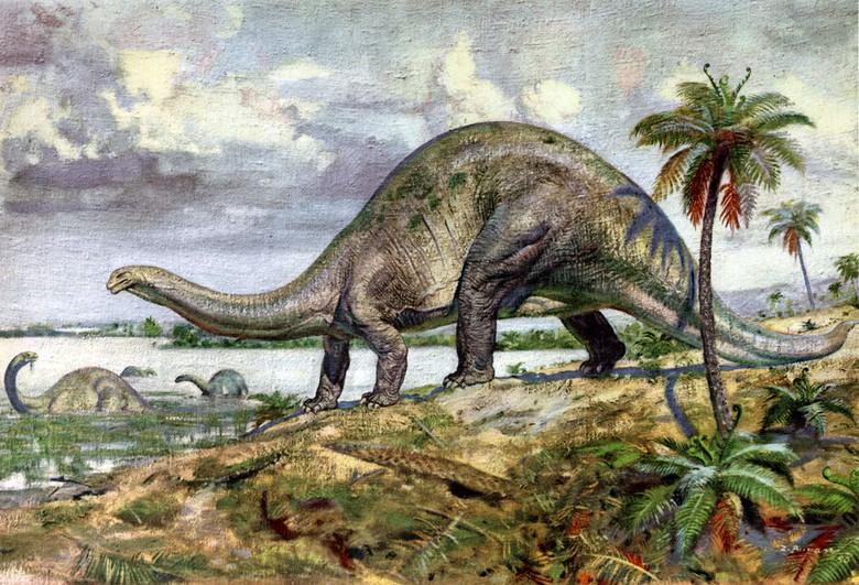 Наблюдения живых динозавров в Южной Америке