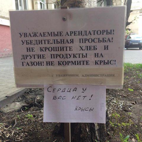 Листая старую тетрадь - из Паутины...) 18+