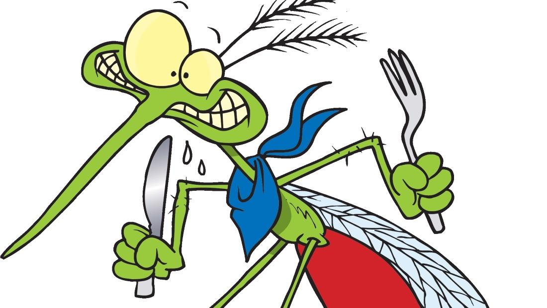 Какие люди кажутся комарам самыми вкусными?