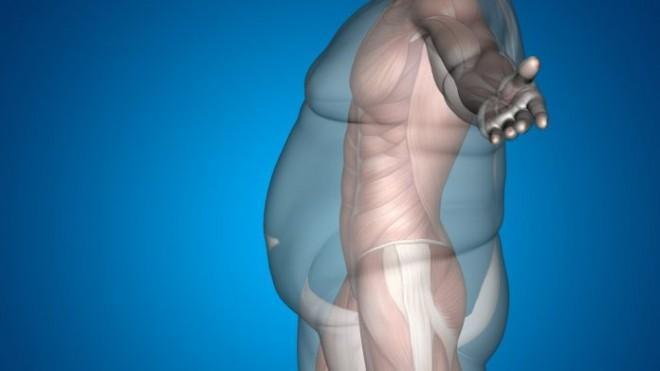 Волшебная точка, помогающая уменьшить избыточный вес