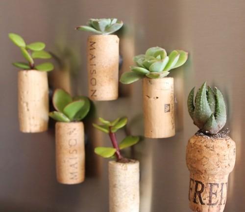 cork_planters18-500x432