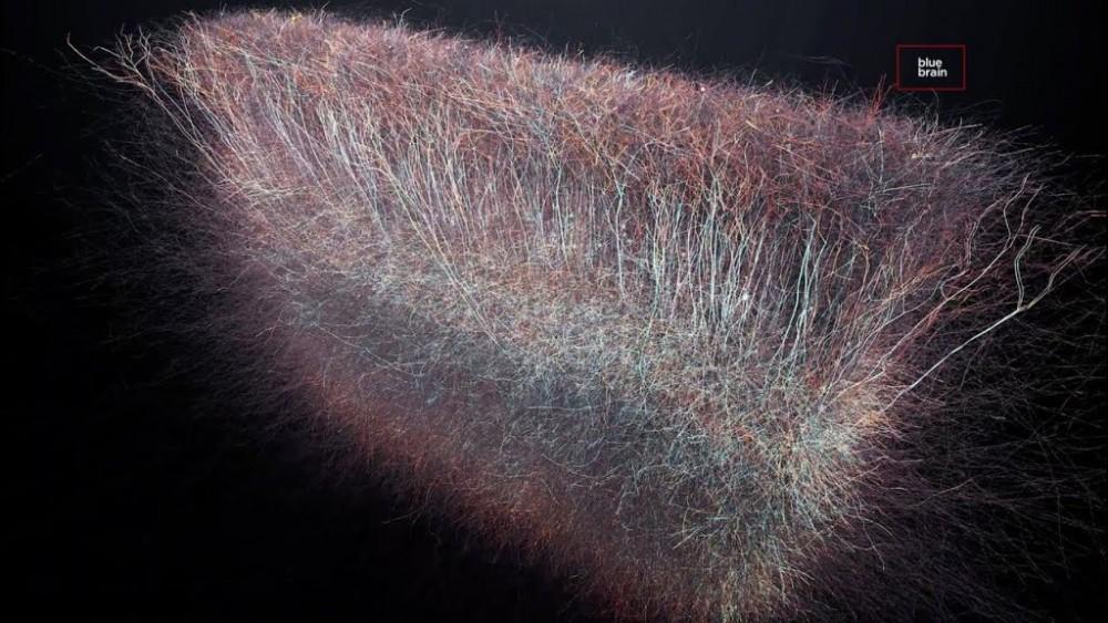 Нейробиологи заявляют о сенсации: в мозге обнаружена Многомерная Вселенная
