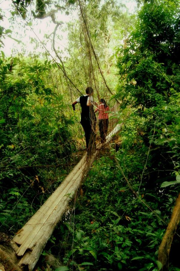 страшные висячие мосты не для слабонервных