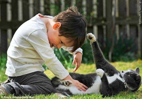 Бездомный кот помог мальчику-аутисту. Для...