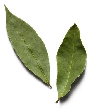 Положить лавровый лист в укромных уголках и трещинах держать тараканов прочь.