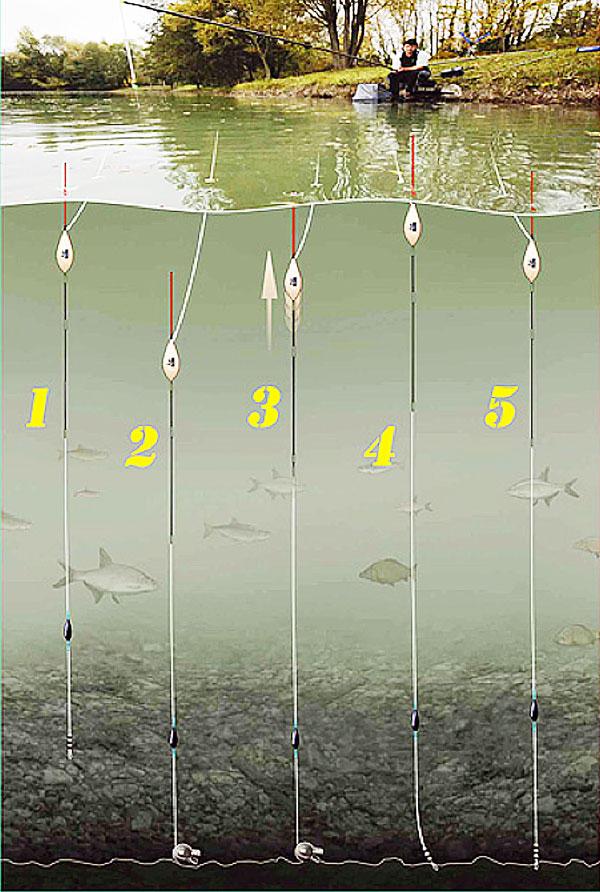 поплавковая ловля