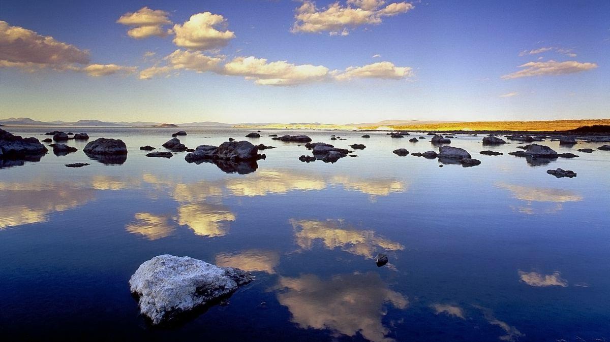 Удивительная в своей красоте дикая природа нашей планеты.