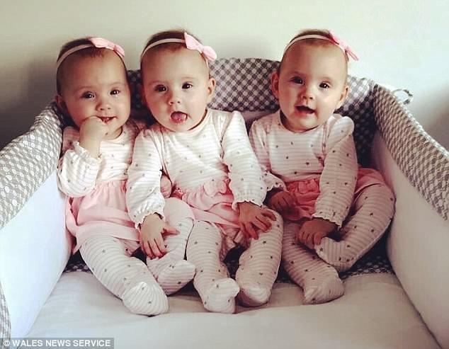 Идентичные тройняшки из Уэльса и их родители, поймавшие удачу за хвост