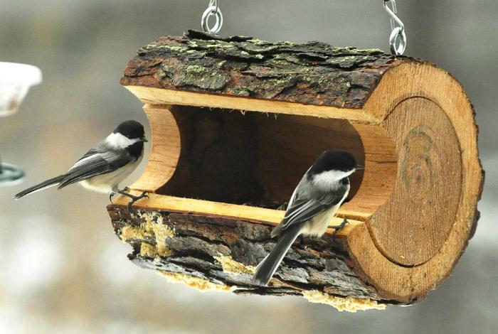 Небольшая кормушка для птиц в деревянном срубе.