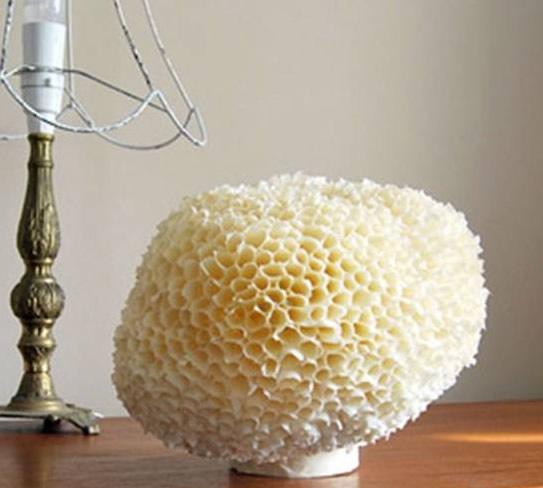 Кораллы своими руками для украшения интерьера в морском стиле (2) (543x488, 104Kb)
