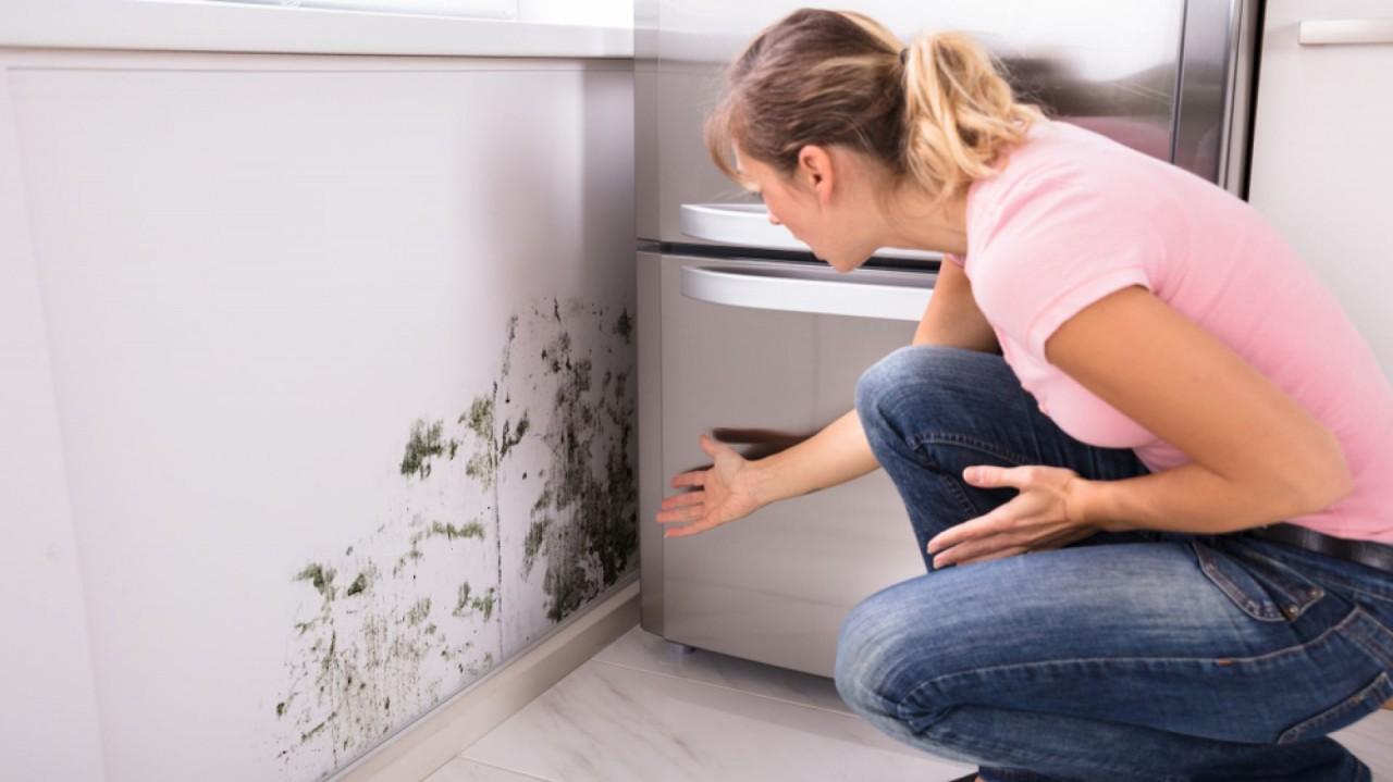 Умные краски — помогут избавиться от трещин и влаги