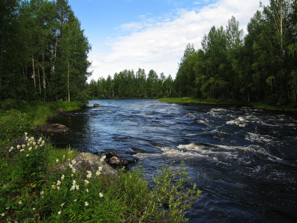 Редчайшее явление природы: песня реки. Видео