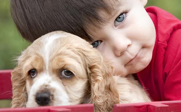 Настоящие друзья - мальчик и собака