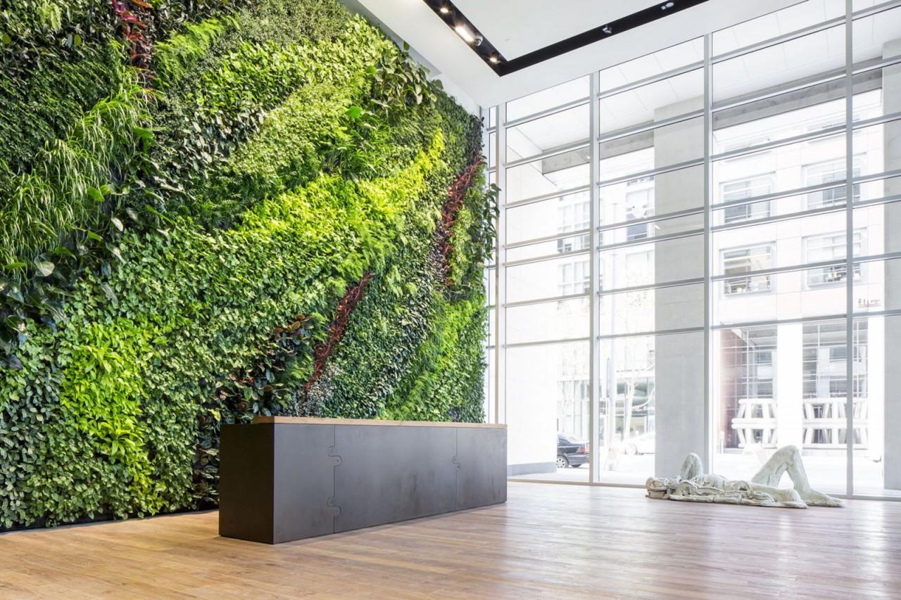 Вертикальное озеленение — оригинальное решение оформления пространства