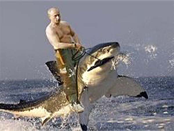 """""""Нам много обещали, и никто ничего не сделал"""": жители поселка под Керчью выложили обращение к Путину из камней - Цензор.НЕТ 5090"""