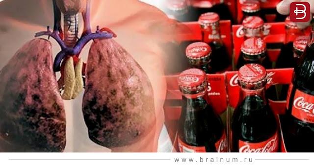 Что происходит с телом после выпитой банки Колы?