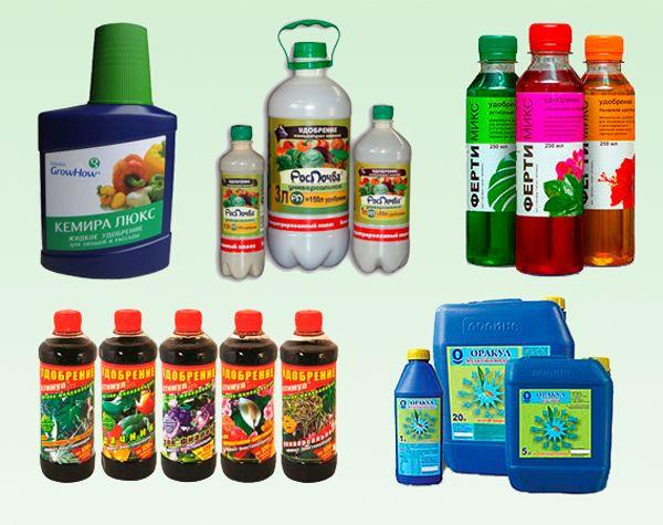 Калийные удобрения для овощей и цветов: сроки внесения и дозировки