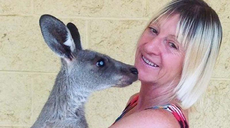 В Австралии кенгуру жестоко …