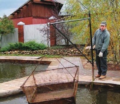 Как сделать кормушку для рыбы в пруду своими руками