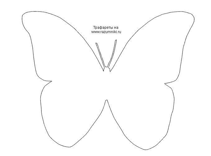 Скачать Шаблоны Бабочек - фото 8