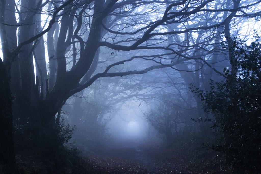 Научные объяснения призраков