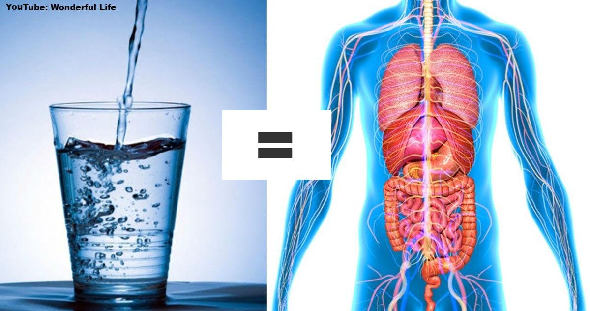 Вот что будет с вашим телом, если вы начнете пить воду натощак