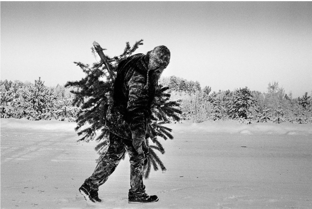Фотограф Алексей Мякишев  (1).JPG