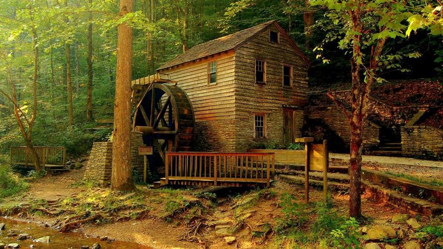 houseinwood13 Самые красивые дома в лесу