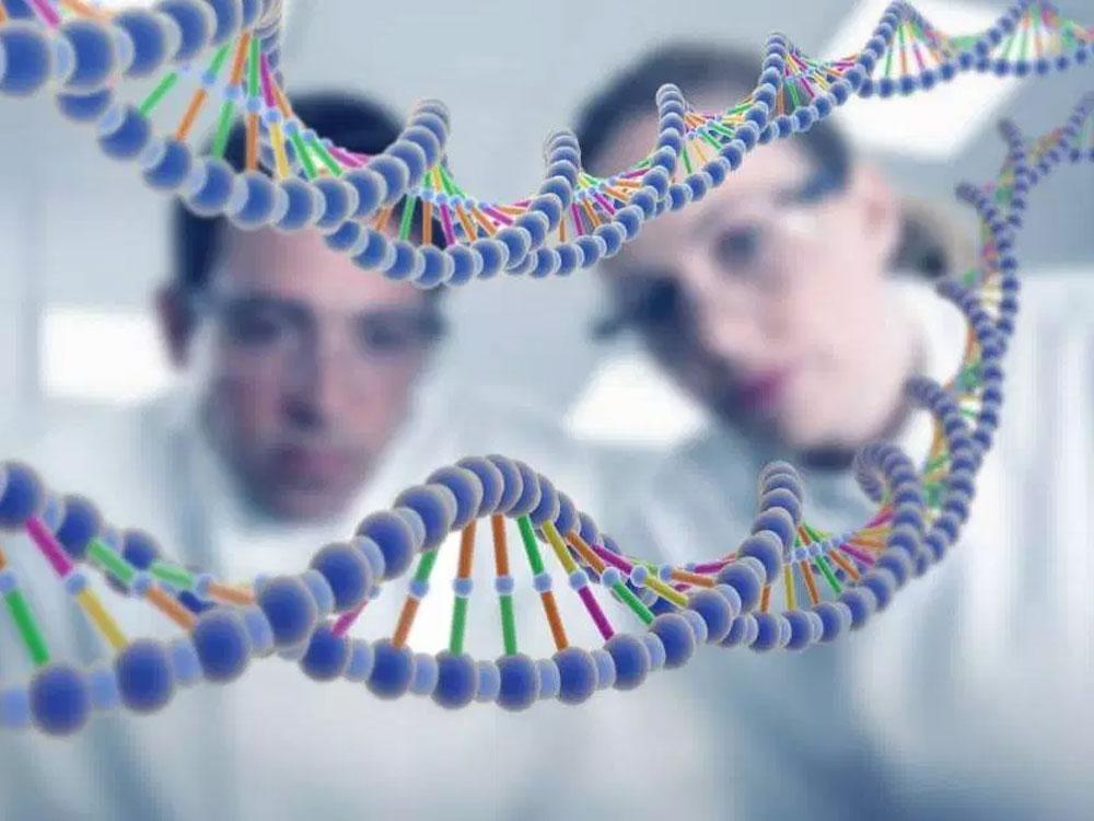 В организме человека найден счетчик прожитых лет