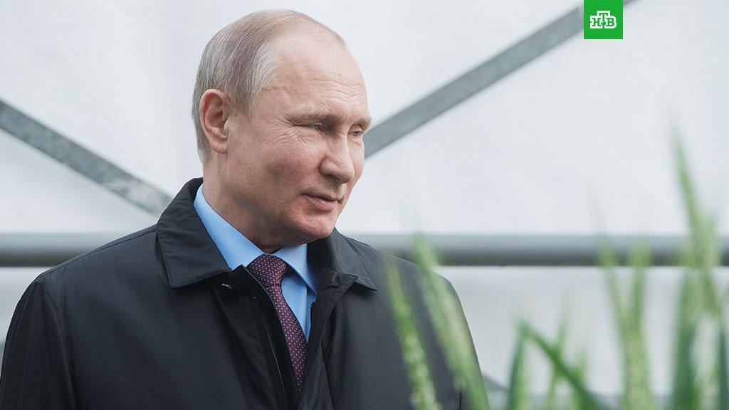 ЦИК: в Крыму и Севастополе Путин набирает более 91% голосов