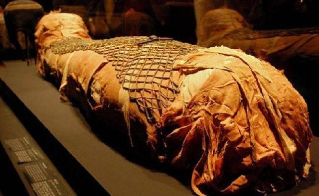 Саркофаг выжившего инопланет…