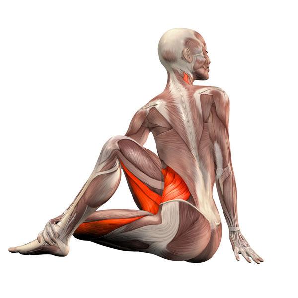 Скручивание позвоночника: Самое полезное упражнение для всего организма.