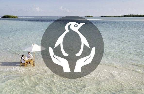Вакансия мечты: продавать хорошие книги на Мальдивах, развлекая знаменитостей