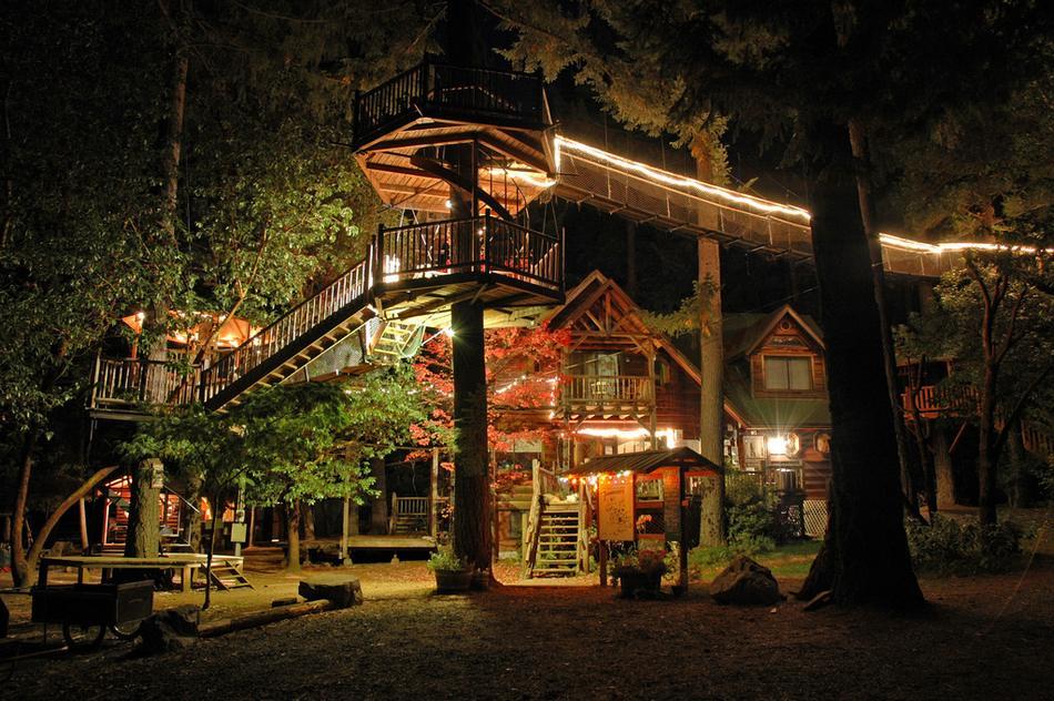 houseinwood05 Самые красивые дома в лесу