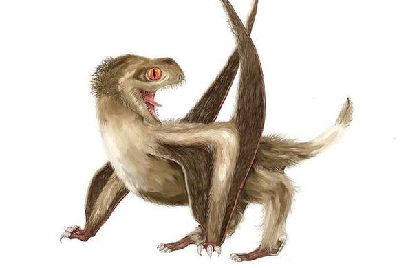 Ученые узнали новые подробности о внешнем виде древних рептилий