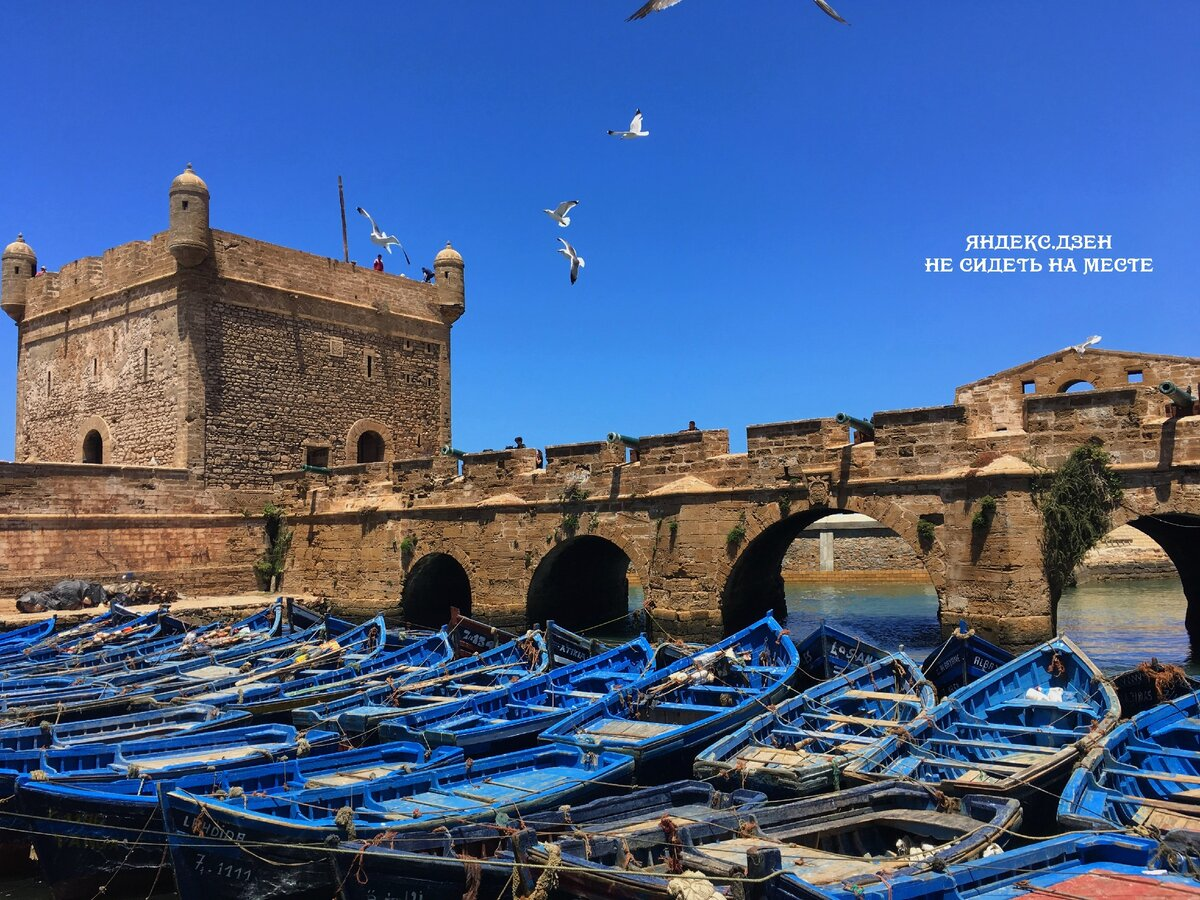 Волшебная Эс-Суэйра, Марокко. Сюда за атмосферой и морепродуктами
