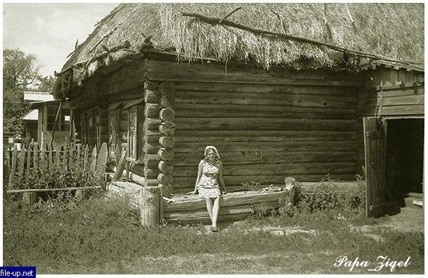 Как сделать завалинку в деревянном доме