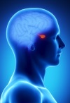 Аденома гипофиза - опасная доброкачественная опухоль