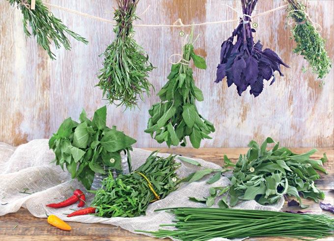 blagorodstvo - Счастливая кулинария - Прованские травы