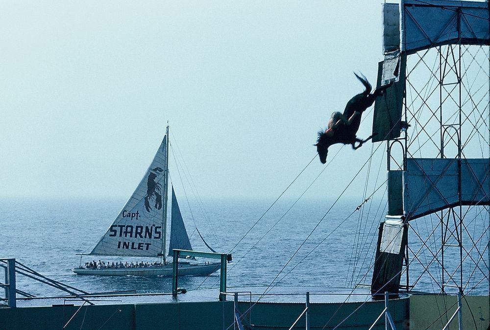 Ныряющие лошади Атлантик-Сити