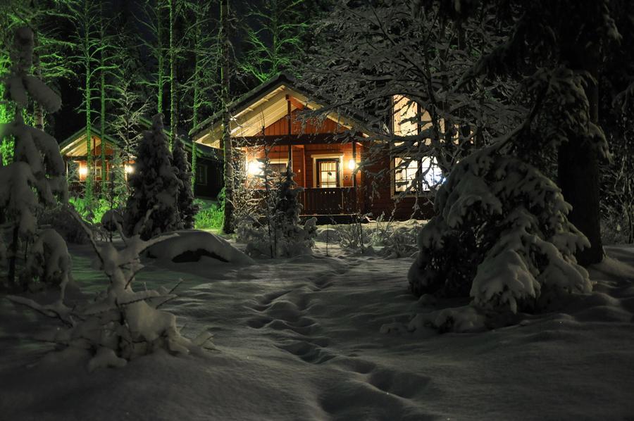 houseinwood20 Самые красивые дома в лесу