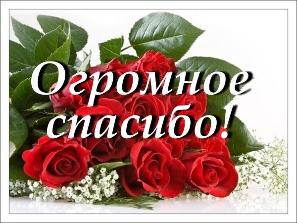 Спасибо большое вам за поздравление