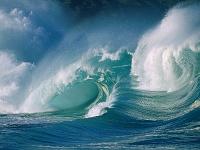 Моря и океаны 49