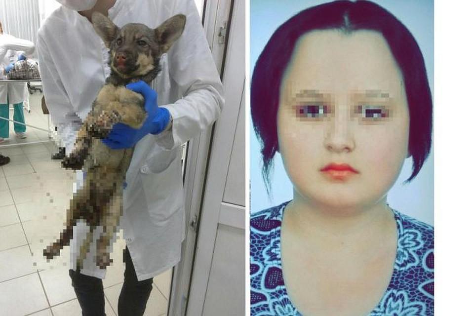 Неравнодушные сибиряки требуют наказать девушку, бросившую щенка в огонь
