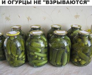 "Огурцы не ""взорвутся"""