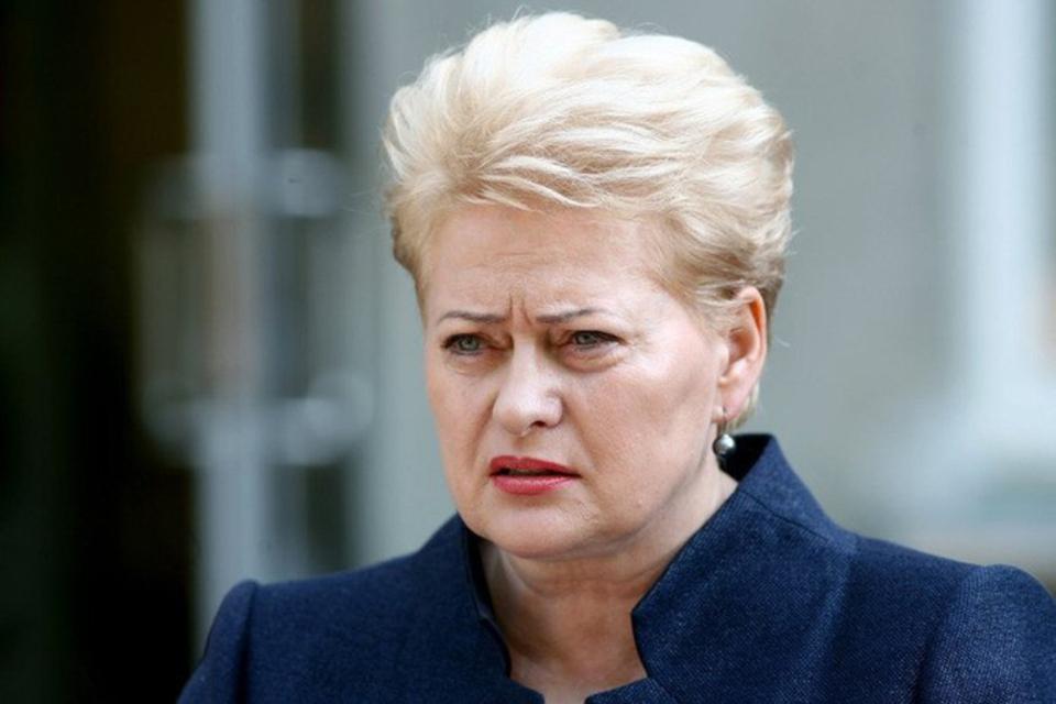 Самолет президента Литвы вне…