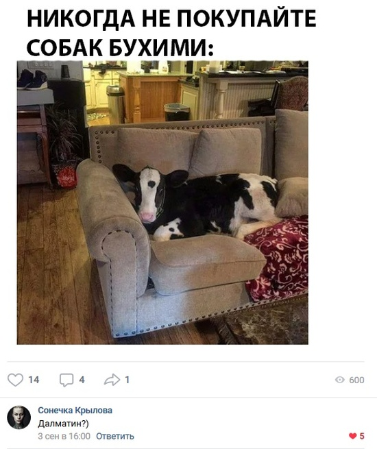 Юмор из социальных сетей (37 скриншотов)