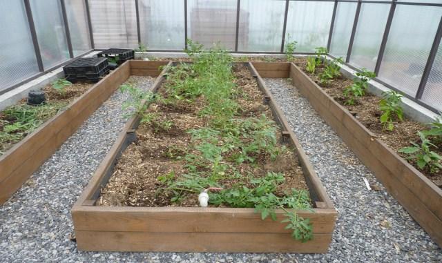 Чем прикрыть почву, чтобы не росли сорняки?