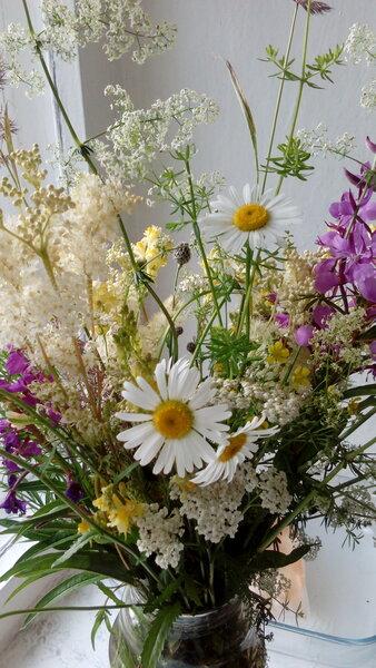Цветы из леÑа.