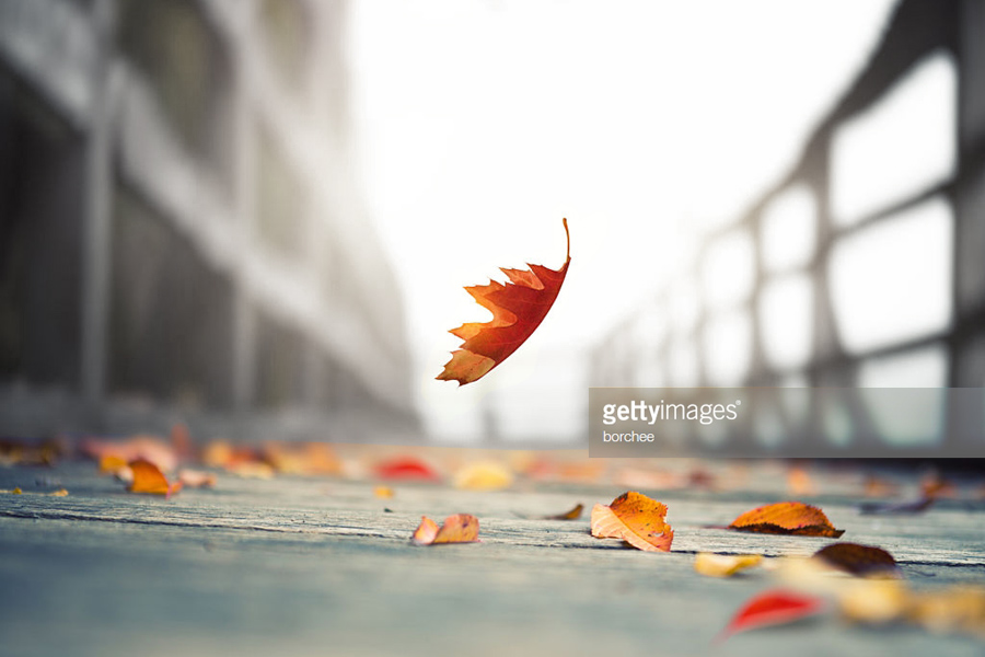 О «чёрном» октябре для процветающей страны